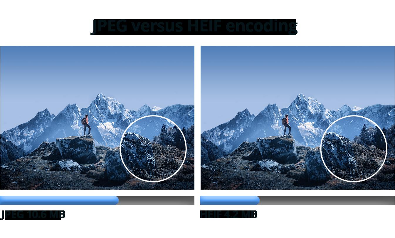 heif-blog-comparison